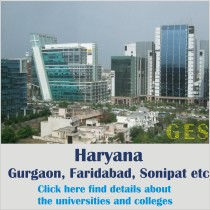 small square banner- haryana
